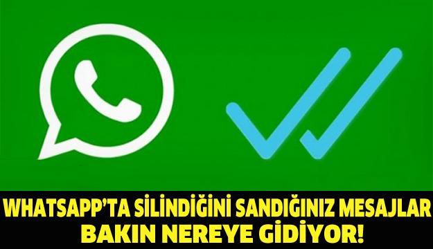 whatsappda silinen mesajlar nereye gidiyor