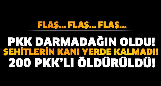 PKK DARMADAĞIN OLDU! 200 PKK'LI ÖLDÜRÜLDÜ! VURULAN KAPMLARDA O ÜST DÜZEY YÖNETİCİDE VARDI!