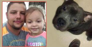 5 gün önce aldığı Pitbull 3 yaşındaki kızını öldürdü!