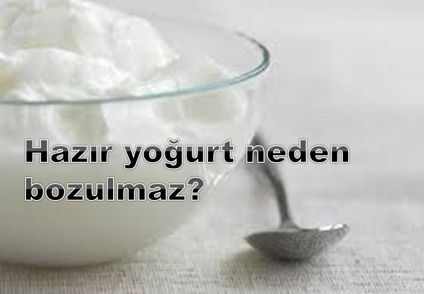 Hazır yoğurt neden bozulmaz?