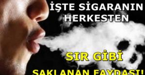 Sigarayı bıraktıktan sonra vücudumuzdaki değişiklikler..!!!
