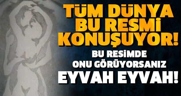 BU RESİMDE ONU GÖRÜYORSANIZ EYVAH EYVAH! GÖZLERİNİZ NASIL GÖRÜYOR?
