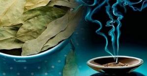 Defne yaprakları ile evinizde de mucizeler yaratmak mümkün!