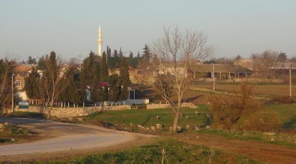105 Küçükbaş Hayvanin Çiçek Hastaliğindan Telef Olduğu Köyde Karantina
