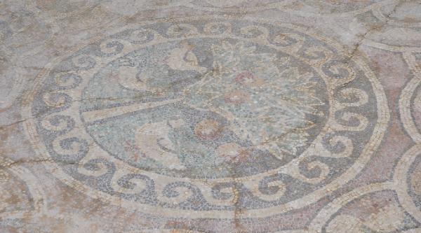 1700 Yillik Elmali Mozaik