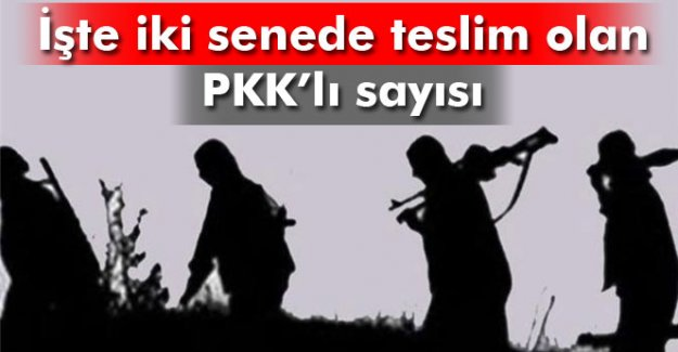8 PKK'llı teslim oldu, rakam 784'e çıktı