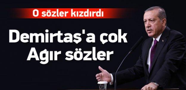 Erdoğan'dan Demirtaş'a çok ağır cevap