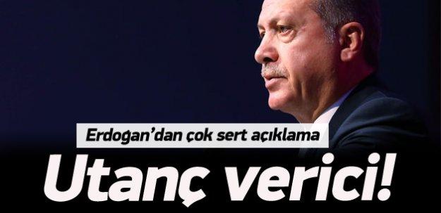 Erdoğan'dan Suruç ve Ceylanpınar açıklaması