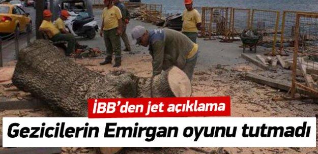İBB'den 'ağaç kesimi' açıklaması