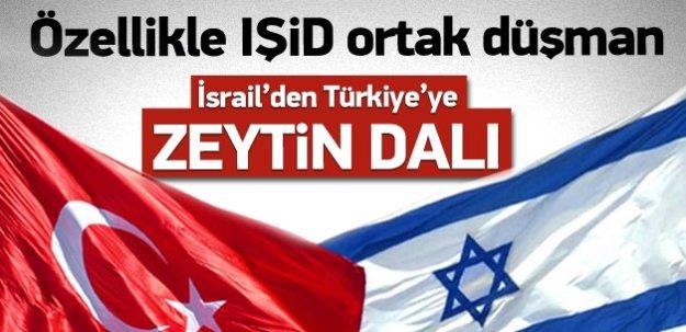İsrail'den Türkiye'ye zeytin dalı