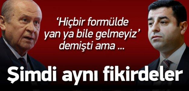 MHP ve HDP ortak düşünüyor!