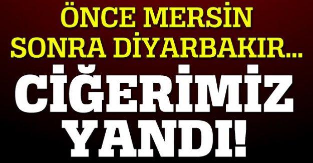 Önce Mersin, ardından Diyarbakır... Ciğerlerimiz yandı!