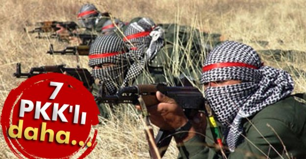 7 PKK'lı daha...
