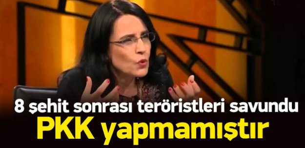 Ayşe Hür: Saldırıyı PKK yapmamıştır