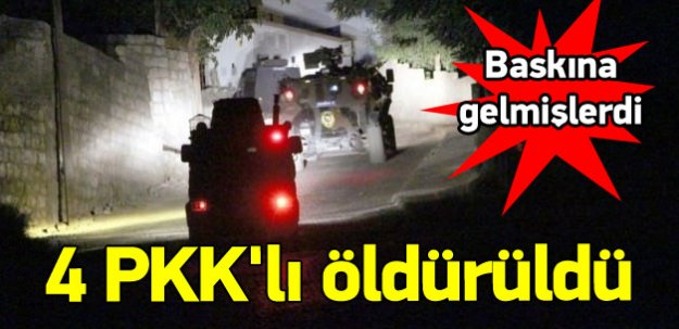Bingöl ve Muş'ta 4 PKK'lı öldürüldü