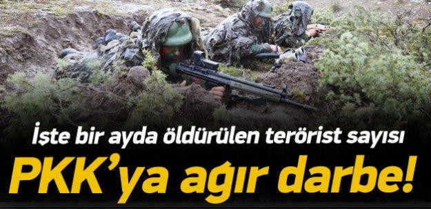 Bir ayda 814 terörist öldürüldü