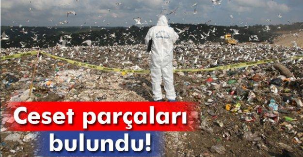 Çöplükte ceset parçaları bulundu