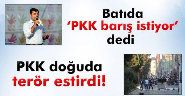 Demirtaş batıda 'PKK barış istiyor' dedi, PKK doğuda teröre devam etti