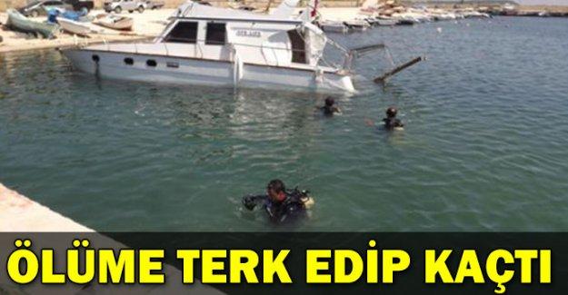 Ege'de tekne faciası