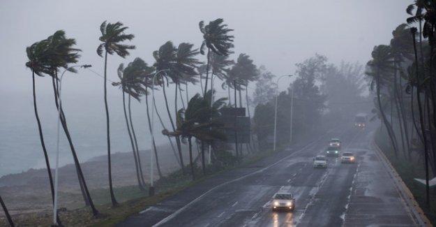 Erika fırtınası Karayip adalarını vurdu: 20 ölü