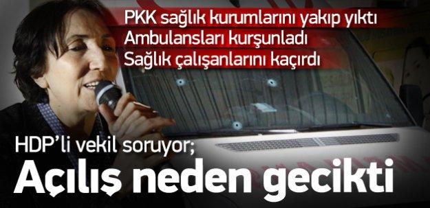 HDP'li Becerikli'den soru önergesi