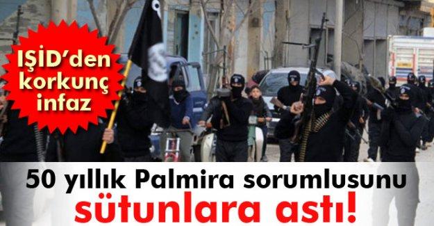 IŞİD'den Palmira'dan sorumlu arkeoloğa infaz