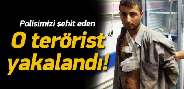 İşte polisimizi şehit eden o terörist