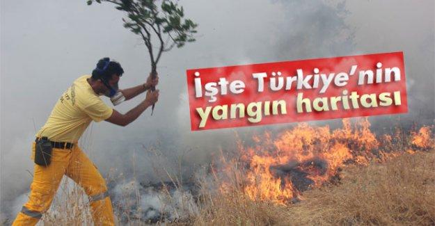 İşte Türkiye'nin yangın haritası