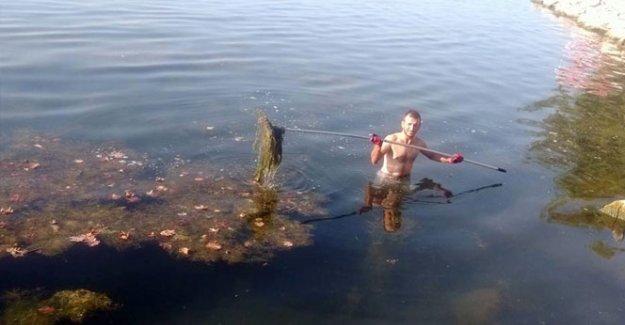 İznik gölü temizleniyor