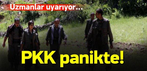 PKK panikte! Uzmanlardan 'ateşkes' uyarısı