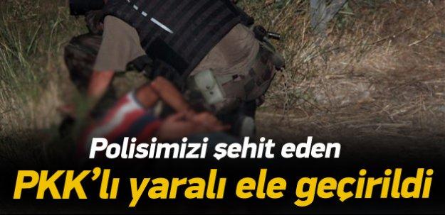 Polisimizi şehit eden PKK'lı yaralı ele geçirildi