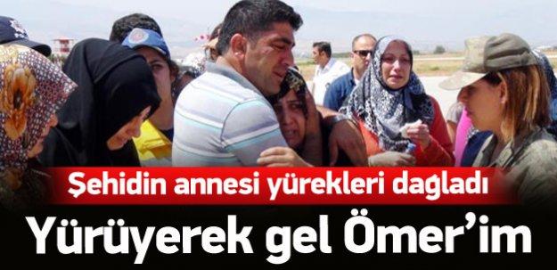 Şehidin annesi: Yürüyerek gel Ömer'im