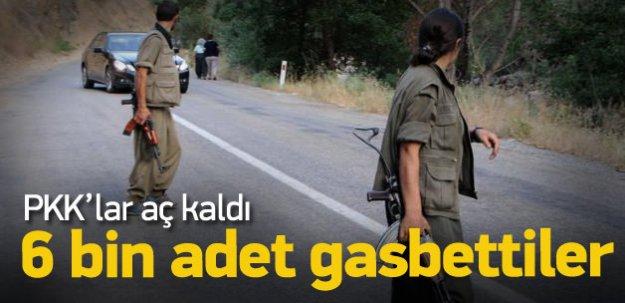 Teröristler 6 bin kase yoğurdu gasbetti