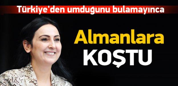 Yüksekdağ'dan Alman hükümetine çağrı!