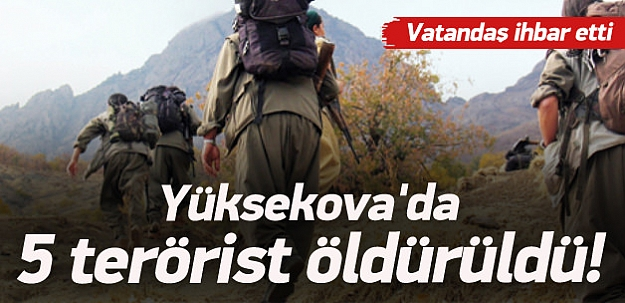 Yüksekova'da 5 terörist öldürüldü