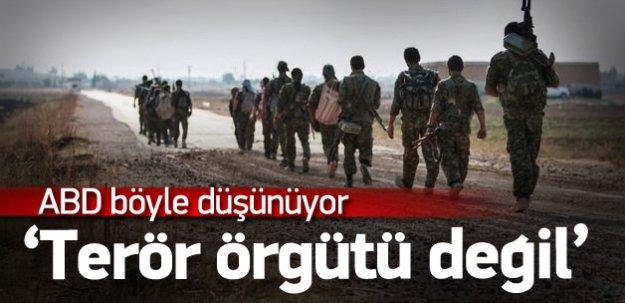 ABD: YPG'yi terörist olarak görmüyoruz