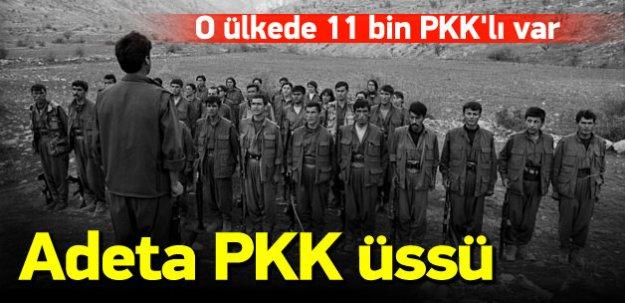 Almanya'da 13 bin PKK'lı var!