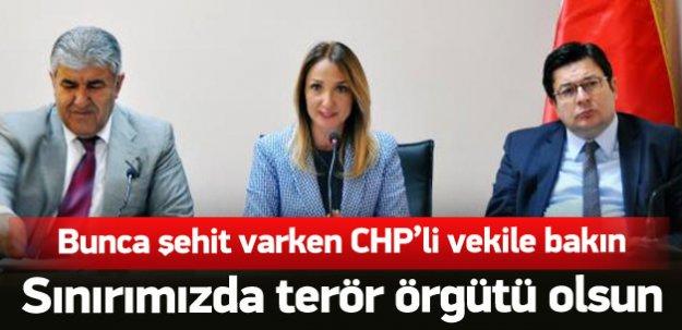 CHP'li vekil sınırda terör örgütü olsun dedi