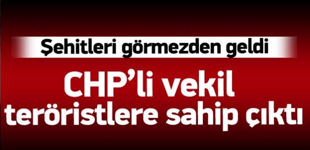 CHP'li vekil teröristlere sahip çıktı