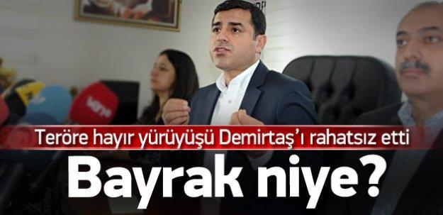 Demirtaş'tan teröre hayır yürüyüşüne tepki