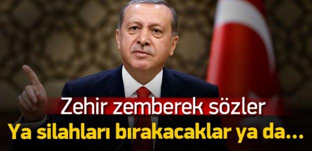 Erdoğan: Tek çözüm örgütün silahları bırakması