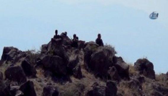 Iğdır'da polisi şehit eden PKK'lılar öldürüldü