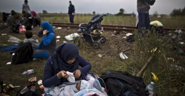 Mültecilere 'yemek savaşı' yaptırıldı!