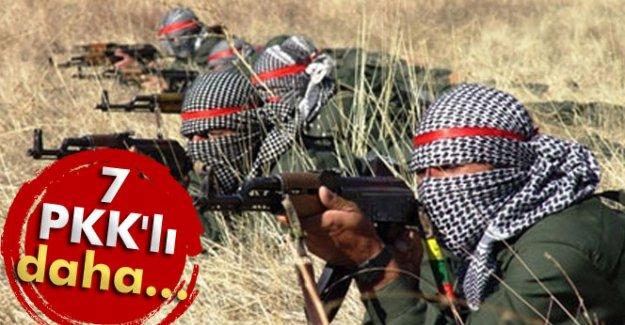 Şırnak'ta 7 PKK'lı...