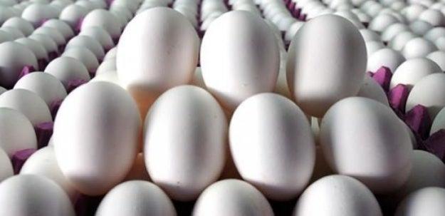 140 bin adet azaldı! Yumurta'ya sürpriz zam