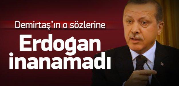 Erdoğan, Demirtaş'ın o sözlerine inanamadı