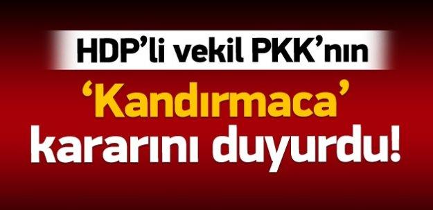 HDP'li vekil PKK'nın kararını duyurdu!
