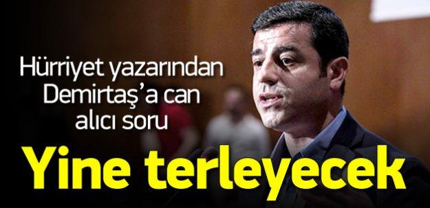 Hürriyet yazarından Demirtaş'a can alıcı soru