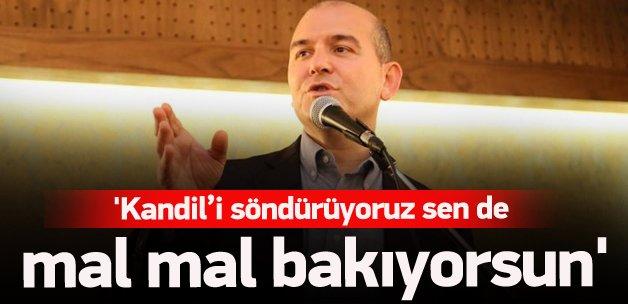 Soylu'dan Demirtaş'a: Sen de mal mal bakıyorsun