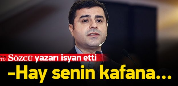 Sözcü yazarından Demirtaş'a: Hay senin kafana